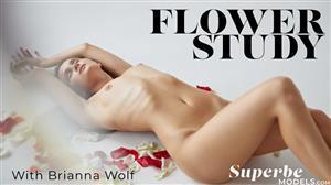 superbemodels-20-12-31-brianna-wolf-flower-study.jpg