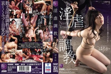 JBD-267 Nasty Training Haruka